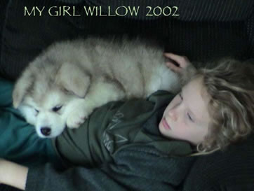 ALASKAN MALAMUTE PUPPY AND WILLOW